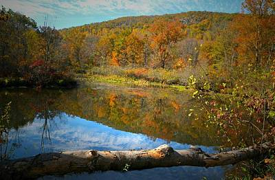 Litchfield County Landscapes Photograph - River Runs Through It by Diana Angstadt