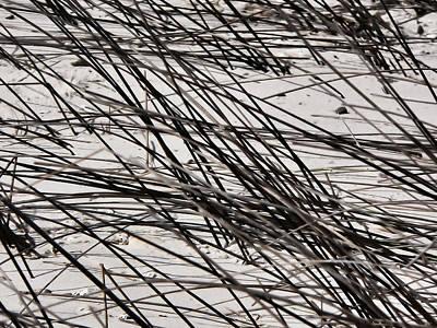 Photograph - River Sand Grass Texture by Kathy K McClellan