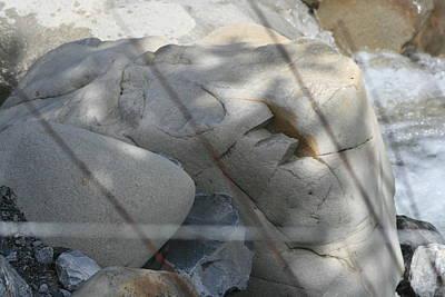 Photograph - River Stone Light Prad's Haute Bleone by Phoenix De Vries