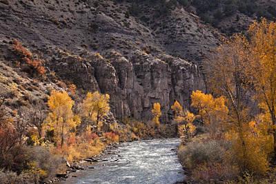 River Through The Aspen Art Print by David Kehrli