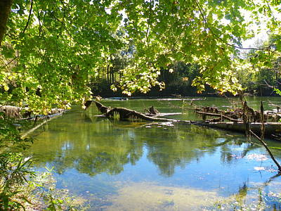 Photograph - River View by Lisa Wooten
