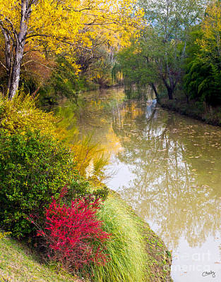 River With Autumn Colors Art Print