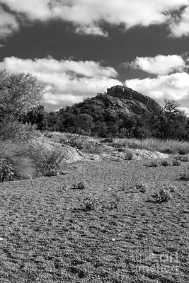 Photograph - Riverbed by David Cutts