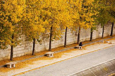 Ile De La Cite Photograph - Riverfront, Ile De La Cite, Paris by Panoramic Images