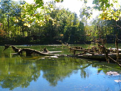 Photograph - Rivers Edge by Lisa Wooten