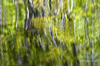 Photograph - Rivers Reflection by Glenn Gordon