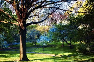 Photograph - Riverside Park In April by Steven Mancinelli