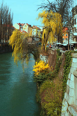 Photograph - Riverside Walks Ljubljanica by Graham Hawcroft pixsellpix
