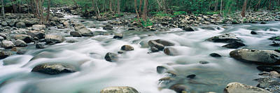 Riverstream, Tennessee Art Print by Panoramic Images