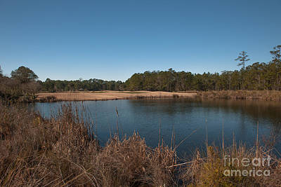Photograph - Rivertowne Golf Course by Dale Powell