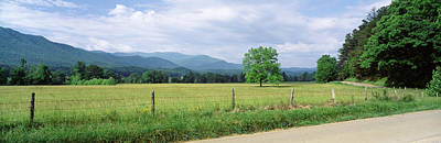 Barbed Wire Fence Photograph - Road Along A Grass Field, Cades Cove by Panoramic Images