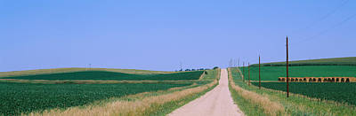 Telephone Poles Photograph - Road Along Fields, Minnesota, Usa by Panoramic Images