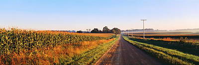 Road Along Rural Cornfield, Illinois Print by Panoramic Images