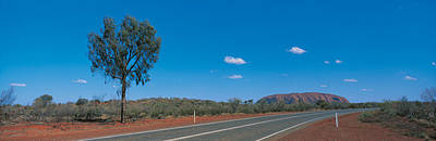 Dry Brush Wall Art - Photograph - Road Ayers Rock Uluru-kata Tjuta by Panoramic Images
