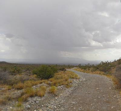 Photograph - Road From Mt Charleston To Pahrump Nv  by Jonathan Barnes