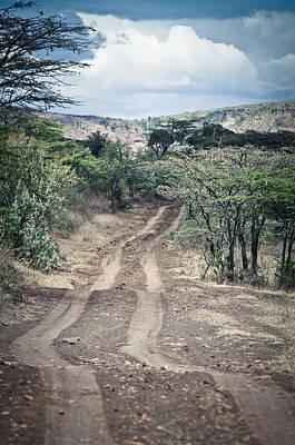 Road In Africa Art Print by Mesha Zelkovich