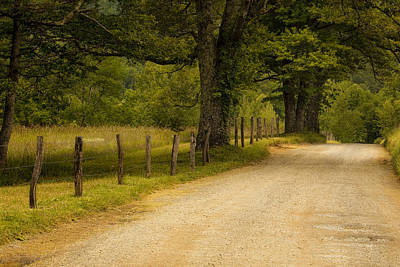 Tree Photograph - Road In The Smokies by Andrew Soundarajan