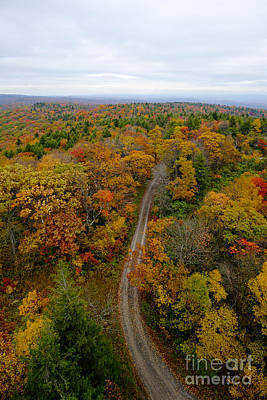 Photograph - Road Leading To Fall Foliage  by Dan Friend