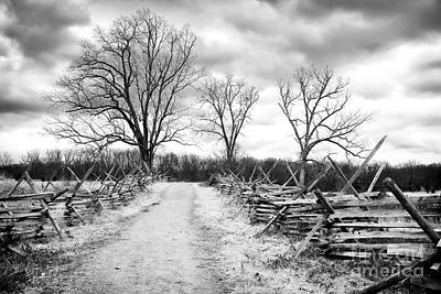 Photograph - Road Less Traveled by John Rizzuto