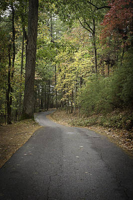 Photograph - Road Near Cade's Cove by Karen Stephenson