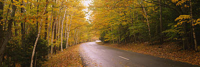 Maine Roads Photograph - Road Passing Through A Forest, Park by Panoramic Images