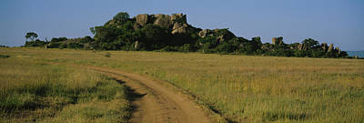 Dirt Roads Photograph - Road Passing Through A Grassland, Simba by Panoramic Images