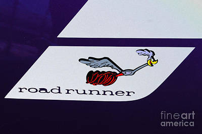 Photograph - Road Runner by Mark Spearman