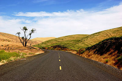 Photograph - Road Through The Palouse by Daniel Woodrum