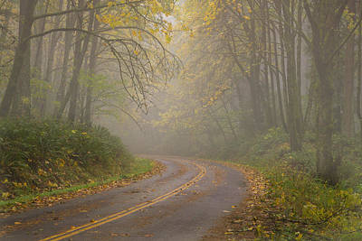 Photograph - Road To Autumn by Kunal Mehra