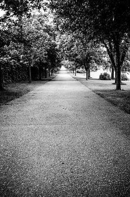 Photograph - Road To Brucemore Mansion In Black And White by Anthony Doudt