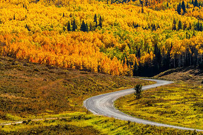 Road To Fall Color Art Print by Teri Virbickis