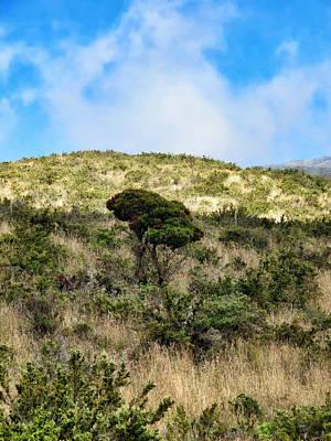 Photograph - Road To Haleakala 22 by Dawn Eshelman