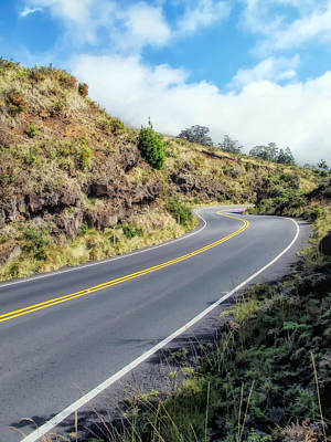 Photograph - Road To Haleakala 32 by Dawn Eshelman