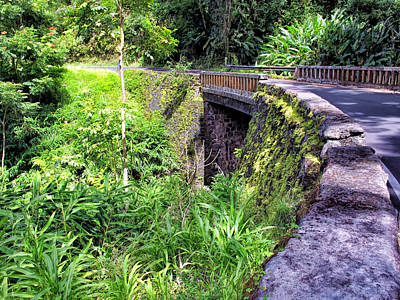Photograph - Road To Hana 18 by Dawn Eshelman