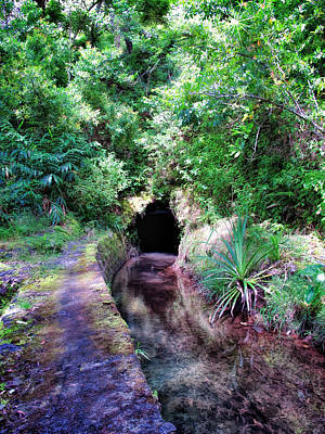 Photograph - Road To Hana 22 by Dawn Eshelman
