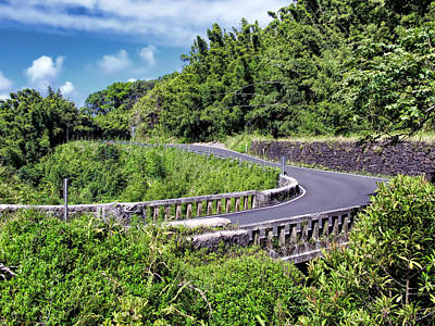 Photograph - Road To Hana 29 by Dawn Eshelman