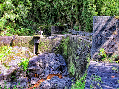 Photograph - Road To Hana 30 by Dawn Eshelman