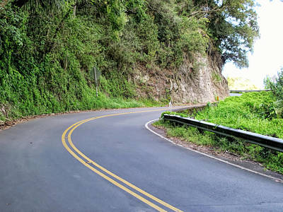 Photograph - Road To Hana 34 by Dawn Eshelman