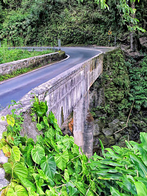 Photograph - Road To Hana 35 by Dawn Eshelman