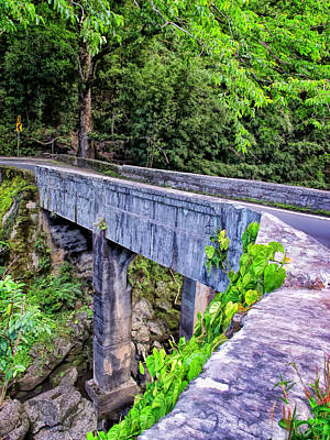 Photograph - Road To Hana 40 by Dawn Eshelman