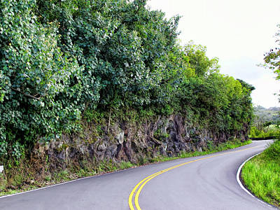 Photograph - Road To Hana 43 by Dawn Eshelman