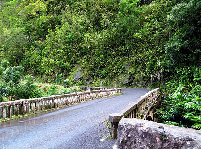 Photograph - Road To Hana- Paint by Shanna Hyatt