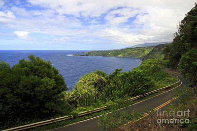 Road To Hana Art Print