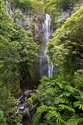 Road To Hana Waterfall - Waimea Valley Maui Hawaii Art Print
