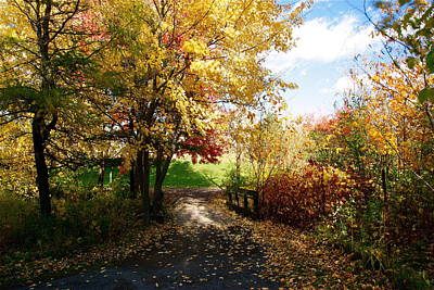 Photograph - Road To Happyness by Jocelyne Choquette