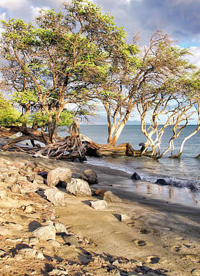 Photograph - Road To Lahaina 28 by Dawn Eshelman