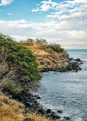 Photograph - Road To Lahaina 31 by Dawn Eshelman