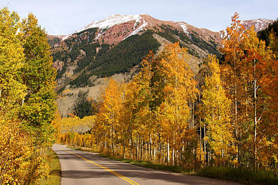 Photograph - Road To Maroon Bells In Autumn by Daniel Woodrum