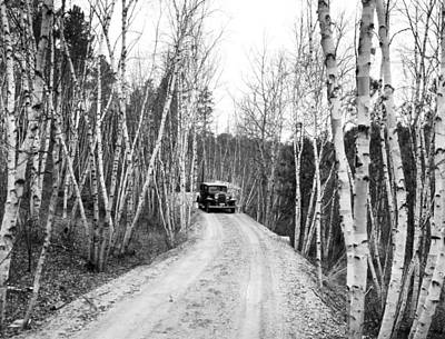 Bare Trees Photograph - Road To Mount Rushmore by Underwood Archives