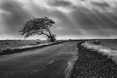 Photograph - Road To Nowhere by Eduard Moldoveanu